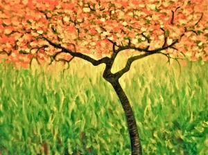 The Cherry Tree Oil on canvas