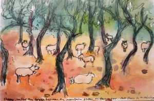 'Sheep under the trees, Mallorca'