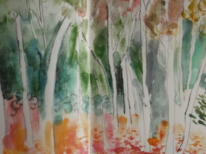Birch trees at Anglesey Abbey. Stick and watercolour.