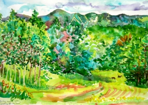Pen and watercolour drawing looking towards Mt Haystack and Mt Snow in the distance. Vermont. The little animals you can see in the clearing are metal sculptures of deer!